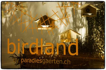 birdland_01