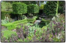 Paradiesgarten_Chelsea2